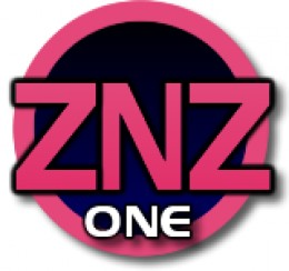 znz one logo